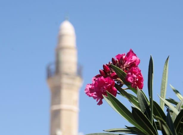 Minarete e uma flor